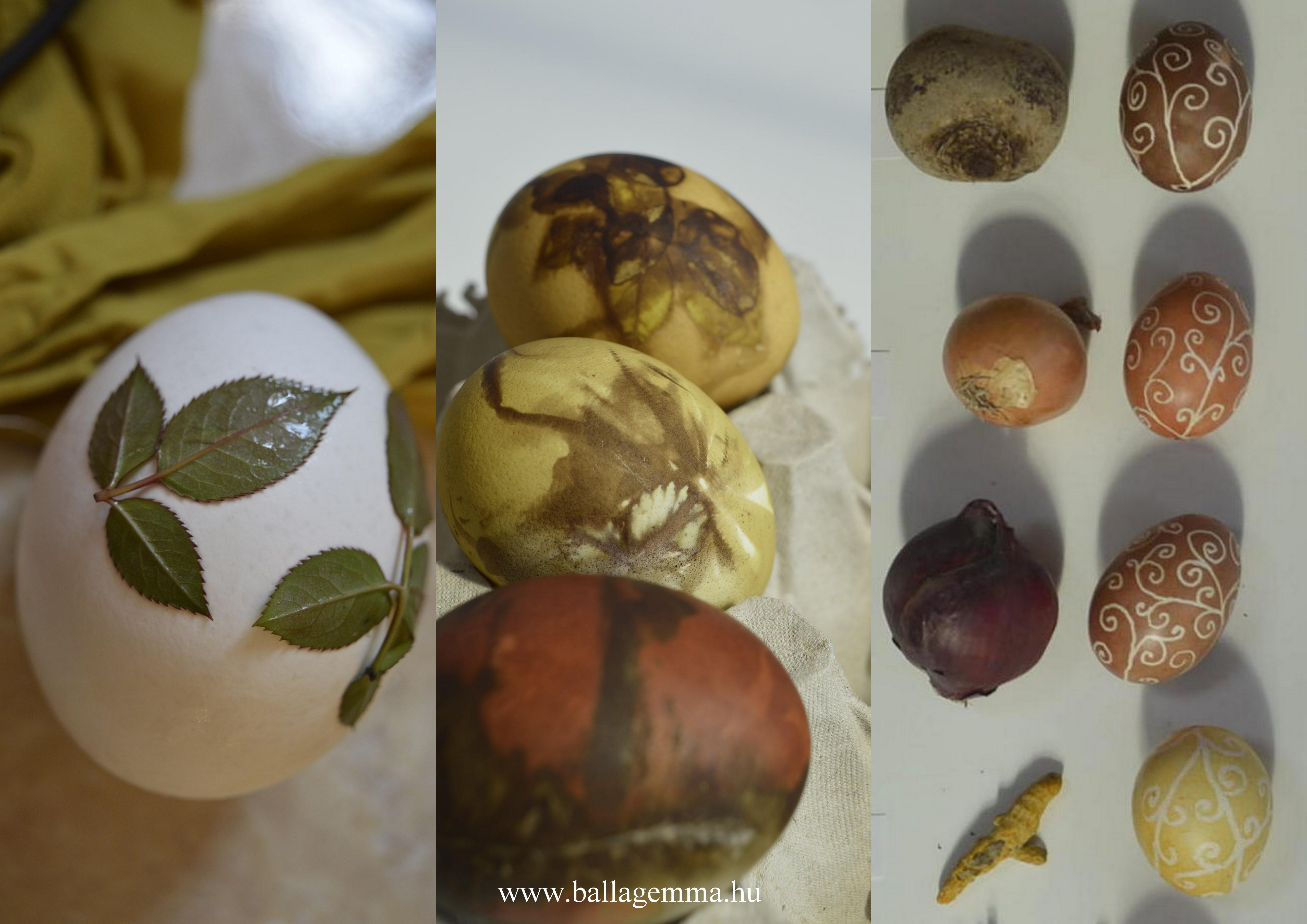Ecoprint tojásfestés növényekkel